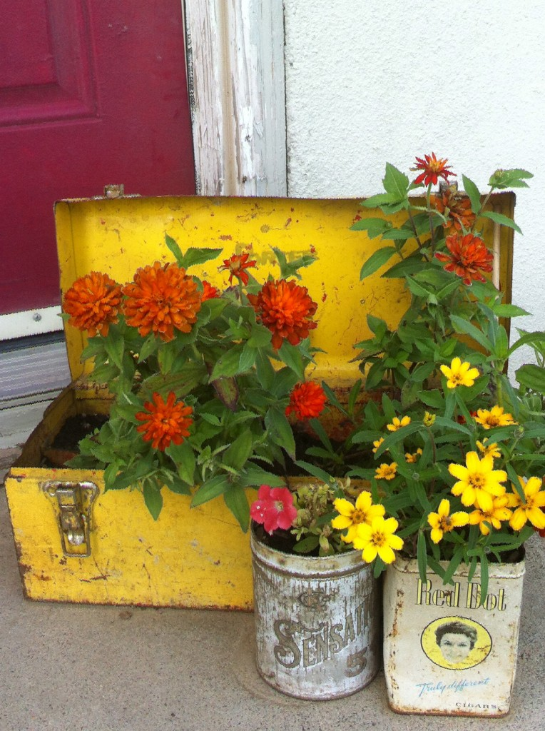 Flowers planted in unusual items = love