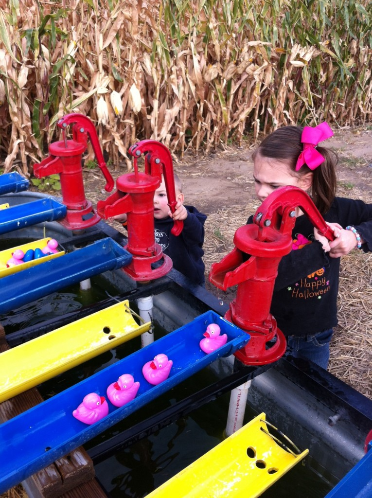 Racing ducks...pink ones, of course