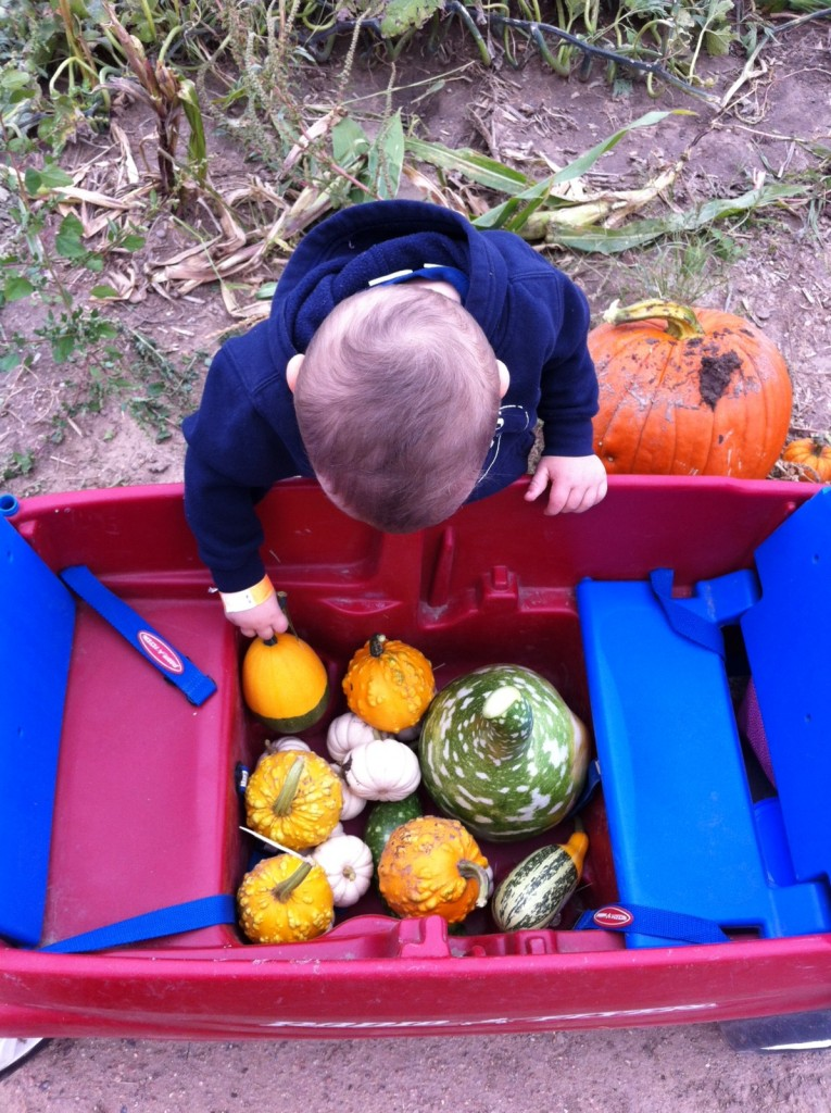 In charge of the gourds...
