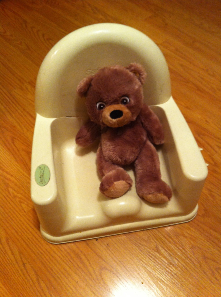 Bear even got a special seat...