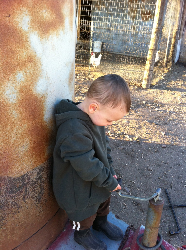 Love my little farm boy!